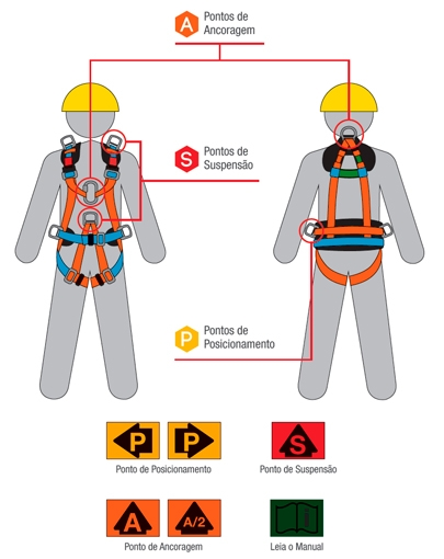 sistema-dos-cinturoes